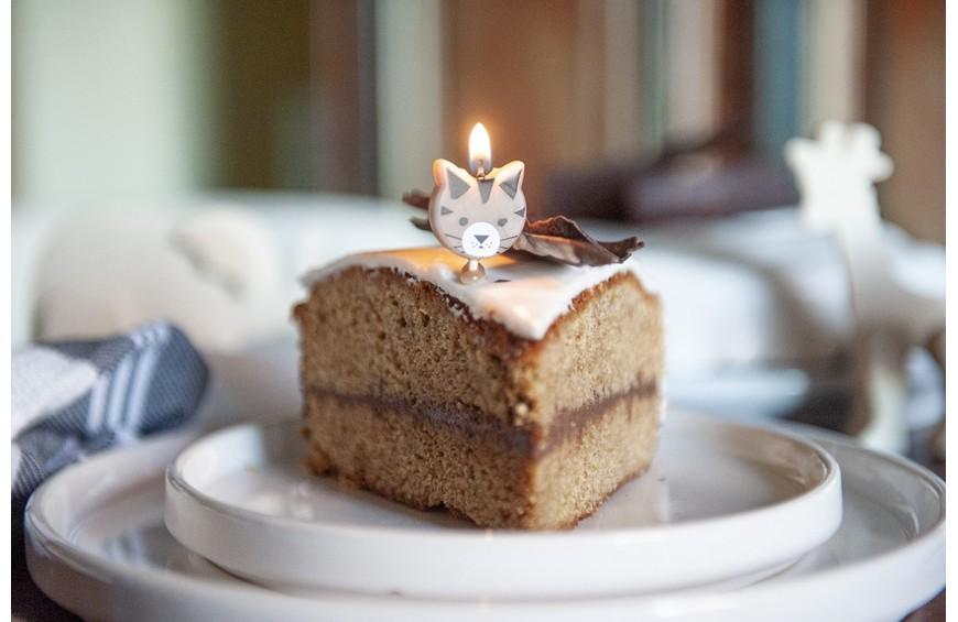 Gâteau à la Vanille et au Chocolat Castelain. Vous en reprendrez bien une part ?